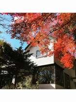 玄関前の紅葉