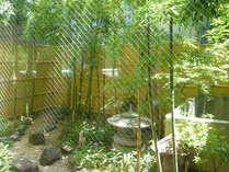 明るい日差しが差し込む室内庭園