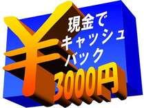 【3000円現金キャッシュバック】出張応援プラン♪