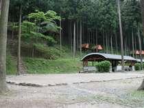 名張・赤目四十八滝・青山の格安ロッジ 赤目四十八滝キャンプ場