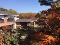 【紅葉】2階客室からの紅葉です♪10月中旬頃~綺麗に色づきます!