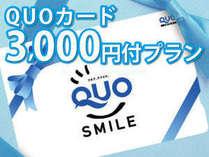 Q3000付