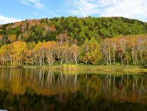 秋色に染まる木戸池