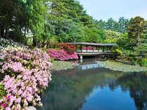 金沢・辰口温泉 やさしさの宿 まつさき
