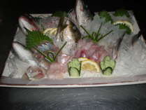 伊良湖でとれた魚です。