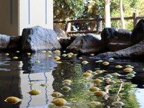 お日にち限定で男性露天風呂が柑橘露天風呂でご利用いただけます。