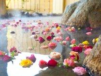 女性露天岩風呂は、香り高き美の空間「バラ湯」が毎日お楽しみいただけます。