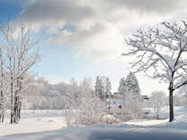 *[ニセコの冬風景]冬の晴れた朝。静かで幻想的な風景が待っています。