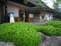 玄関前庭の苔むす石。
