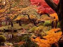 紅葉が見事な松岡庭園