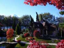 【オルゴールの森】秋の外観 ※一例
