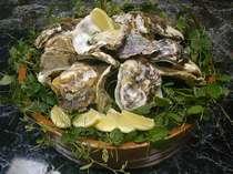 広島名物、牡蠣をご賞味下さい