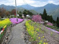 世界遺産・パワースポットとしても注目されている熊野古道「小辺路」