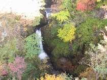 美しい紅葉と滝の水音に癒されて・・・紅葉の身頃は例年10月下旬~11月前半頃