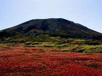 【1日5室迄の期間限定!】北海道最高峰の旭岳へお得に泊まろう♪