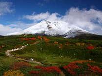 旭岳の初冠雪!紅葉と入り混じるコントラストは圧巻です!