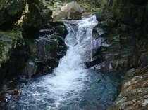 かじかの滝。滝遊びとして地元人に人気のスポット。冷たく澄んだ水にドボン
