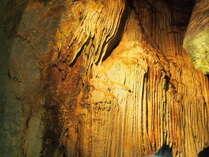 4/1から宿泊【龍河洞入場券付】1億7500万年の太古のロマンが宿る洞窟を大冒険♪一泊夕朝食付