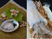 【絶品海鮮グルメ】通好み美味貝プラン【鮑】【烏賊】