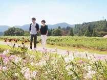 ハーブや花々 大自然の風が気持ちいいハーブガーデン