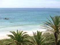 どのお部屋からも本州一綺麗な入田浜の眺望が目の前に広がる