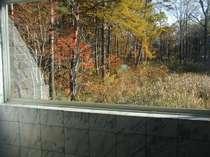 天然温泉展望風呂の窓より紅葉の景色