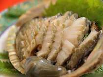 鮑(あわび)は 菅島の特産! 良質の海草がたくさんあり、磯場の質がいいと言われています