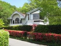 紀州鉄道 伊豆一碧湖ホテル (静岡県)