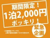 【特別価格】 1泊2,000円! 『寝るだけ』 (タオル・アメニティなし) ■ミックスドミトリー