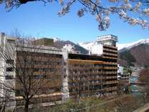 桜とホテル
