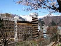 桜と水上ホテル聚楽