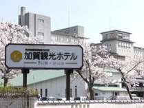 桜 加賀観光ホテル