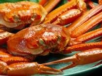 鮮度が落ちやすいため地元でしか食べられない!濃厚な甘みが魅力の紅ズワイガニ♪ 眼前の境港で水揚げ