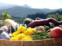 *女将自らが米沢の契約農園に出向き、旬の野菜の中から選りすぐったものを選んで参ります。