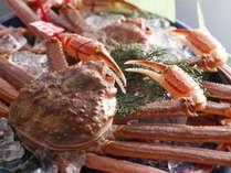 山陰の冬を代表する味覚 松葉蟹。 淡白で上品な甘さそして繊細な味わい
