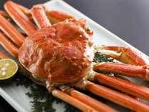 【追加料理:姿ずわい蟹】 4,500円 ※カナダ産冷凍ずわい蟹使用