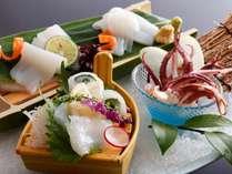 【追加料理:白イカお造り】 4,000円(税別) ※6月~10月中旬限定