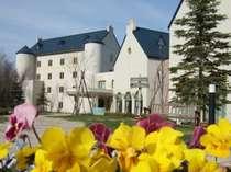 色々な花が一斉に咲き出す 春のマウレ山荘