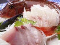 真鶴の新鮮な魚介類を食べたい方は和食プランへ♪*