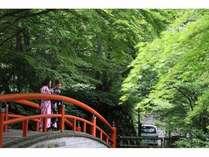 【初夏新緑の季節】眺望部屋&個室お食事処確約プラン