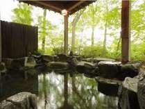 森林に囲まれた露天風呂