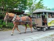 当館前を通る辻馬車心地良い蹄の音で朝を迎えます