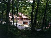 森の中のログキャビン。広いベランダで食事をすることもできます。庭には四季折々に山野草が咲きます。