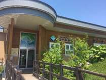 温根湯の人気スポット「北の大地の水族館」。生き生きとした魚の姿が見られます。