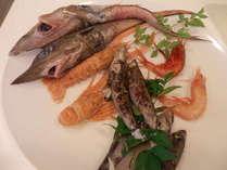 戸田名産の深海魚!戸田湾で水揚げされるメギスやメヒカリなどの深海魚をご提供しています。