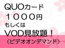 【ビジネス/おひとりさま旅行】シングルに+2000円でツイン・ダブルをひとり占め!QUO1000円orVOD付♪