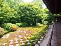 東福寺「方丈庭園」北庭。苔と敷石の市松模様。