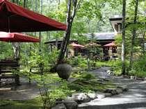 森のテラスから小径をぬけてレストランへ!