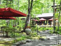 森のテラスからレストラン眺望