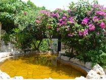 【シギラ黄金温泉(リゾート内)/露天風呂】緑と花々に囲まれた開放的な空間です。
